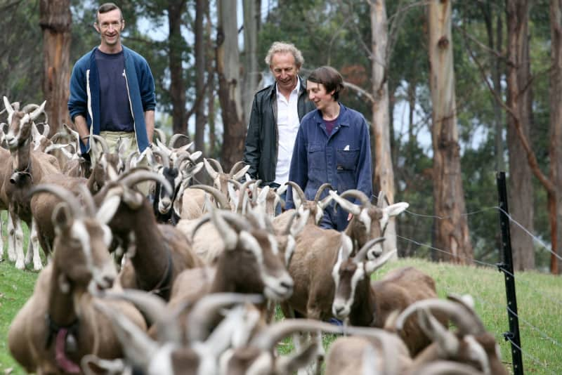 Will Studd with Australian cheese makers and goats