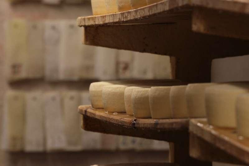 artisan cheese on wooden shelves