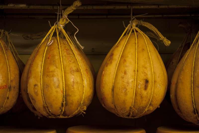 Italian cheese will studd