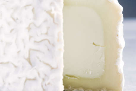 goat cheese interior mould