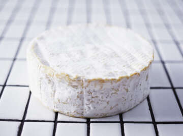 Le Conquerant Camembert on white tiles