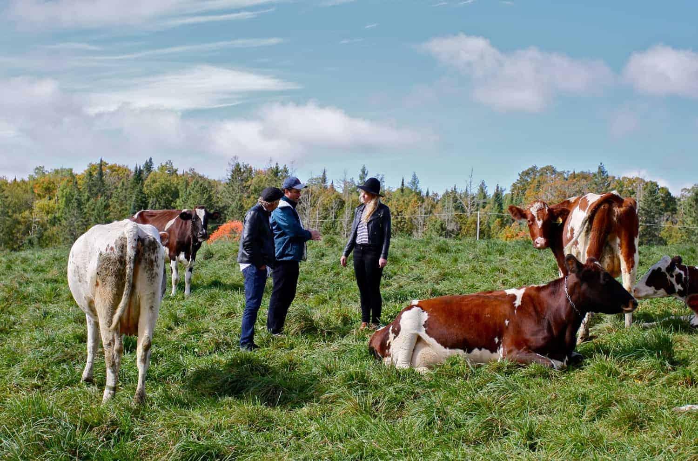 Usa Artisan Cheese Will Studd Jasper Hill Farm Ellie Studd