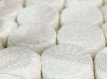 Halloumi cheese making