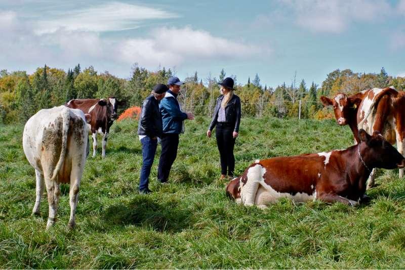 jasper hill farm with  will studd  and Ellie studd