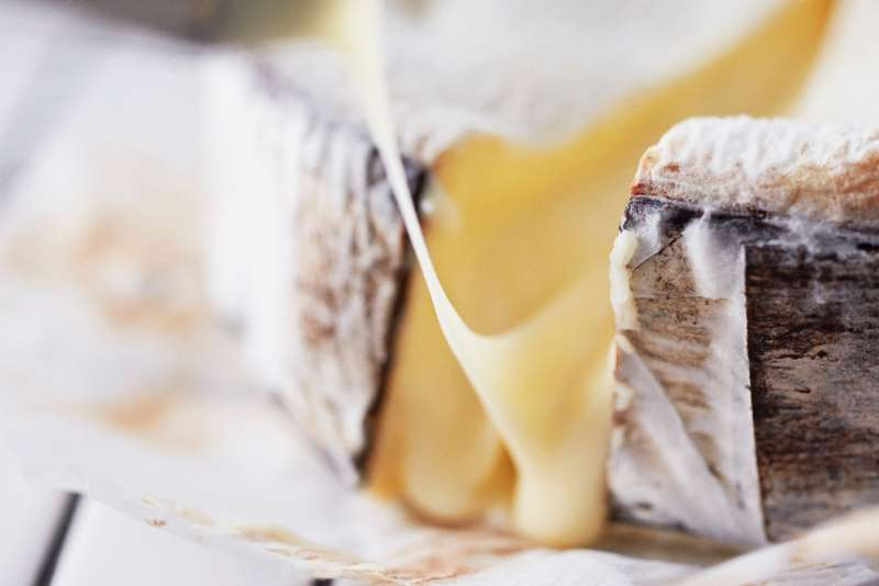 Bark wrapped cheese