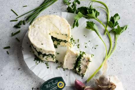 Studd Amazon Cheese Brilliat 3 4 Final Label